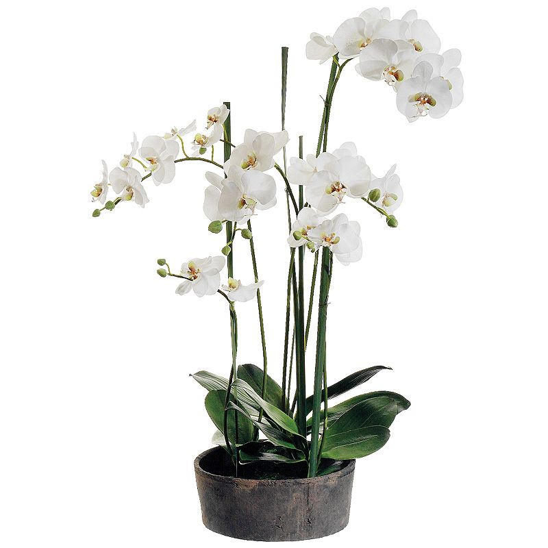 37-in. Artificial Orchid Floral Arrangement