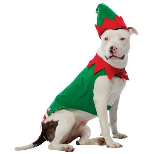 Elf Costume - Pet