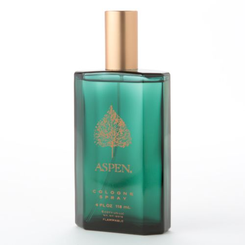 Aspen by Coty Men's Cologne