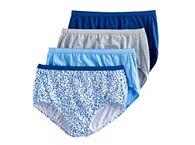 Hanes Panties