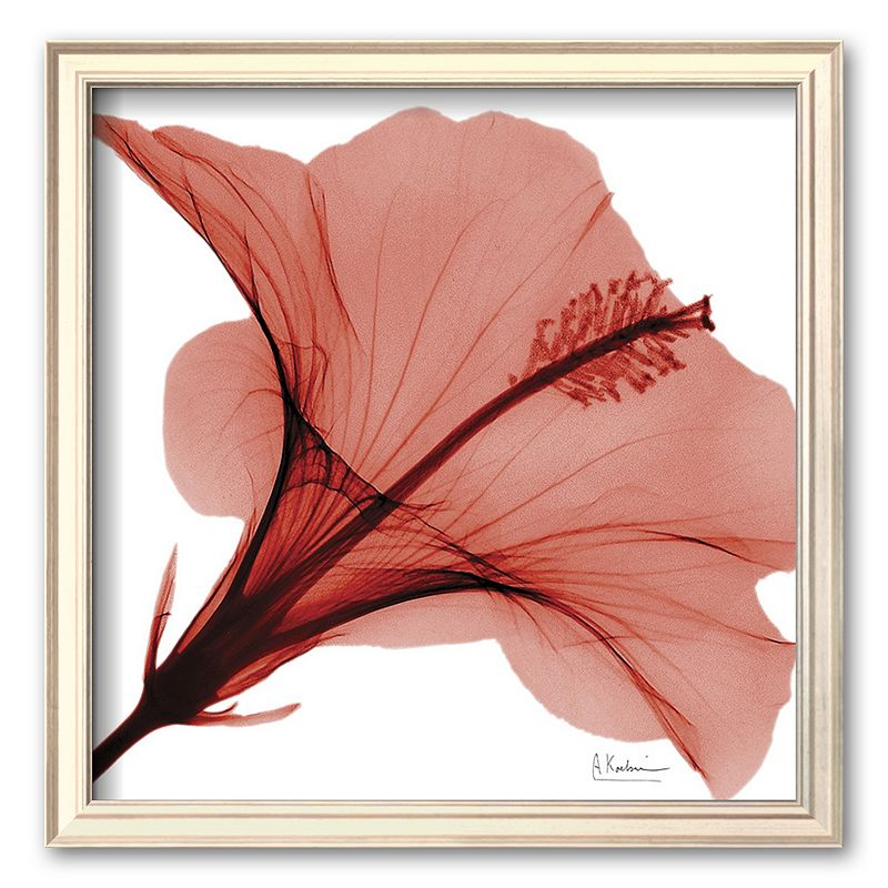 Art.com Close-Up of Red Beauty II Framed Art Print by Albert Koetsier