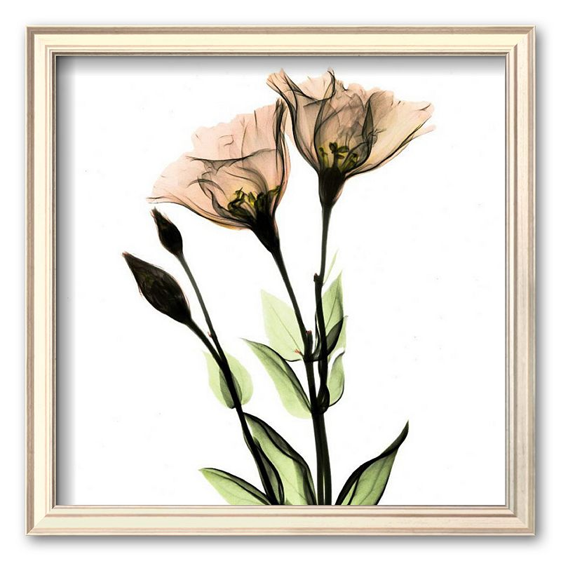 Floral Prints Wall Decor Kohl 39 S