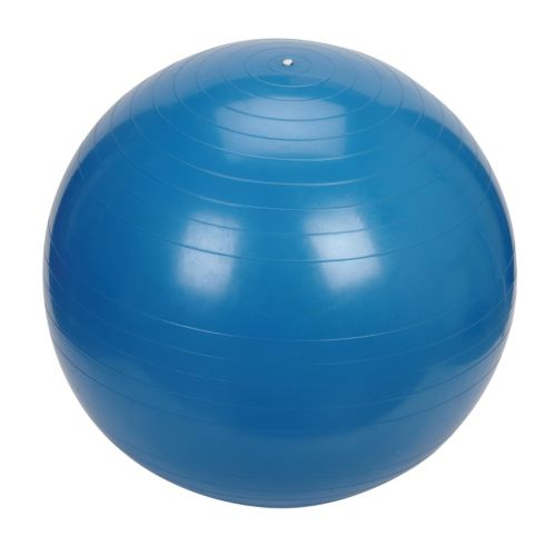 Sunny Health & Fitness 75cm Exercise Ball
