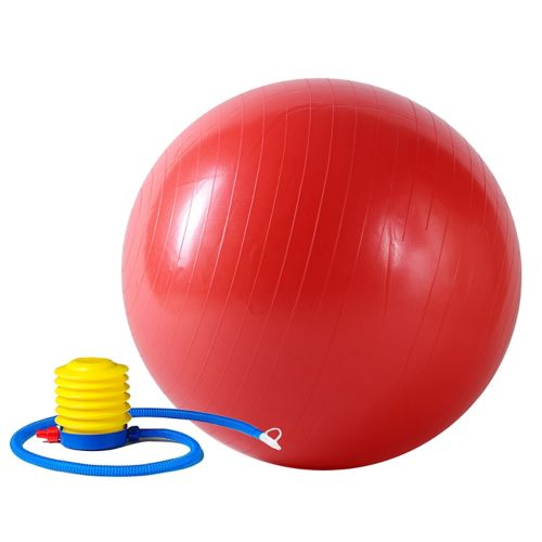 Sunny Health and Fitness 21.7-in. Anti-Burst Gym Ball