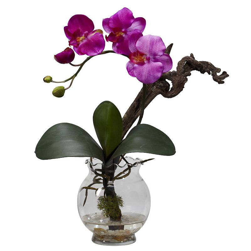 nearly natural Liquid Illusion Silk Phalaenopsis Floral Arrangement