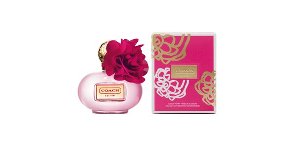 Kohls Wedding Registry Gift Card : Coach Poppy Freesia Blossom Womens Perfume