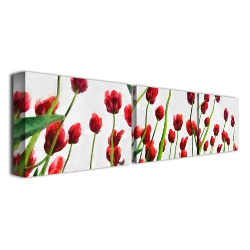 3-pc. Red Tulips From Bottom Up Canvas Wall Art Set by Michelle Calkins