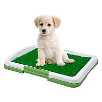 PAW Puppy Potty Trainer Indoor Restroom for Pets