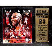 Chicago Bulls Michael Jordan Stat Plaque