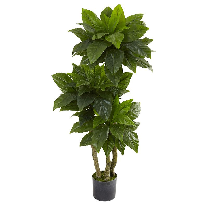 nearly natural 5-ft. Potted Bird Nest Fern Tree - Indoor and Outdoor