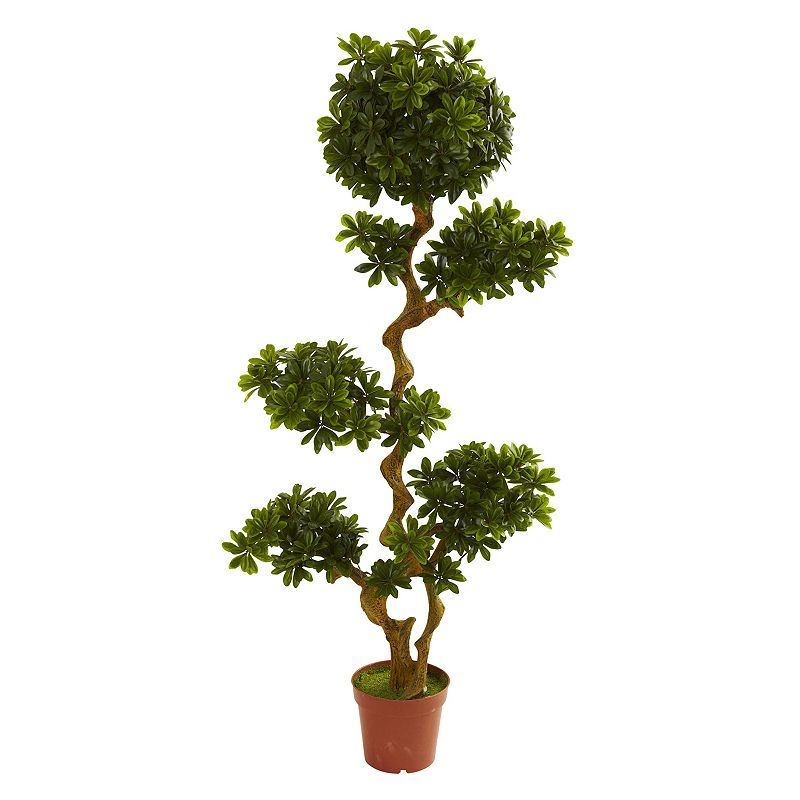 nearly natural 5-ft. Potted Pittispourm Tree - Indoor and Outdoor