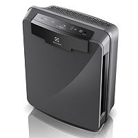 Electrolux PureOxygen 450 HEPA Air Purifier