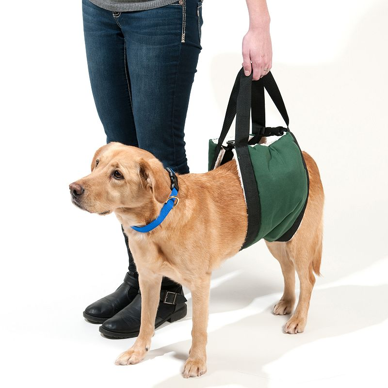 Doctors Foster & Smith Extra-Large Breed Comfort Lift Dog Carrier, Green