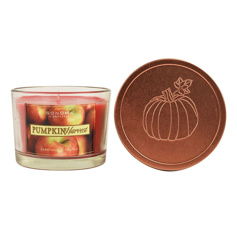 SONOMA Goods for Life™ Pumpkin Harvest 4.8-oz. Small Jar Candle