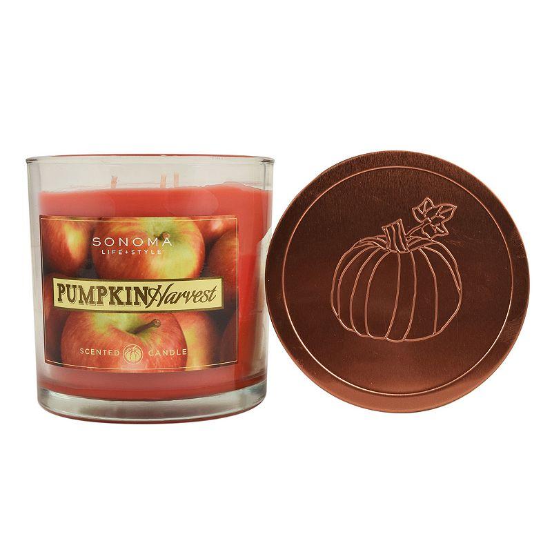 SONOMA Goods for Life™ Pumpkin Harvest 14-oz. Large Jar Candle
