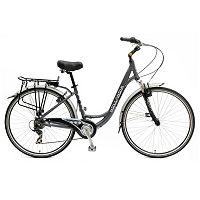 Hollandia Villa Commuter Bike - Unisex