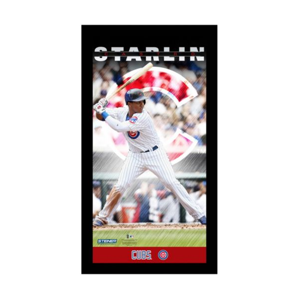 Steiner Sports Chicago Cubs Starlin Castro 10