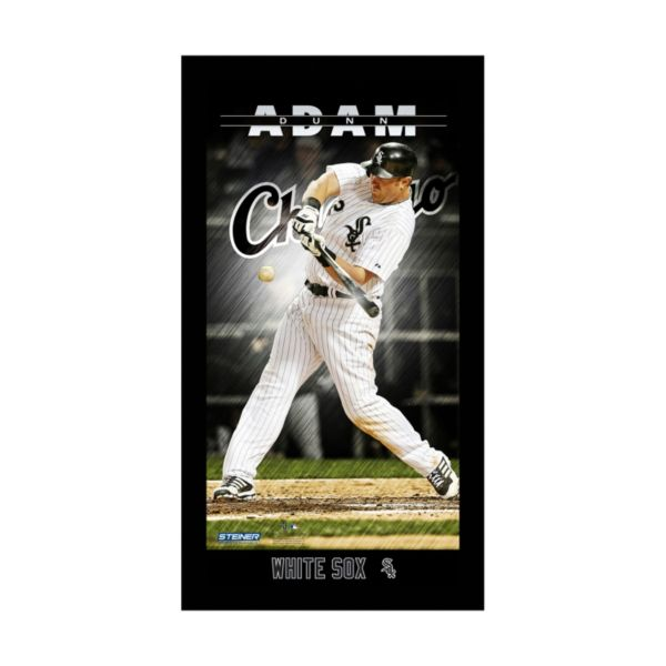 Steiner Sports Chicago White Sox Adam Dunn 10