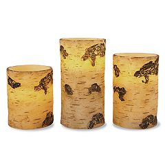 Faux Birch Flameless Candle 3-piece Set by