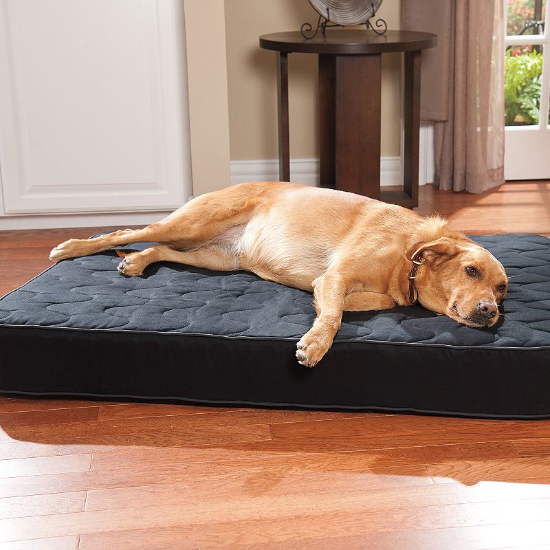 Doctors Foster & Smith Super Deluxe Orthopedic Pet Bed
