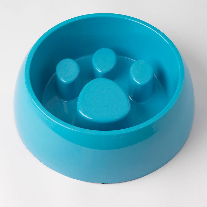 PetRageous Designs 6-Cup Large Slow Feed Pet Bowl