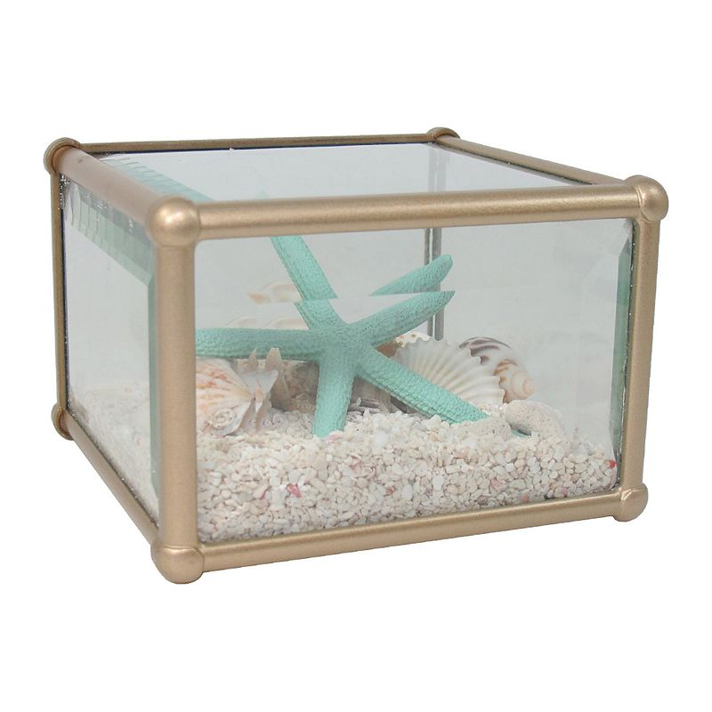 SONOMA Goods for Life™ Faux Shell Glass Table Decor
