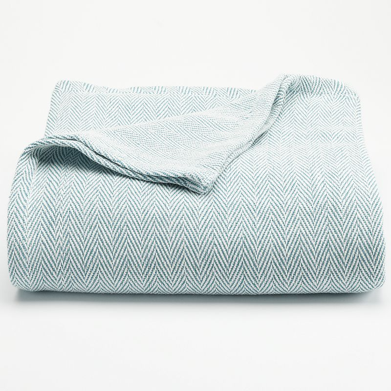 SONOMA Goods for Life™ Egyptian Cotton Blanket