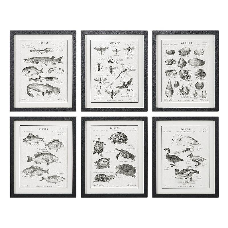 Science Studies Wall Art 6-piece Set