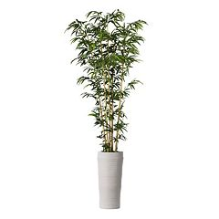 Click here to buy Laura Ashley 93-in. Artifical Bamboo Tree.