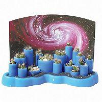 Dunecraft Odd Pods Cacti Growing Kit
