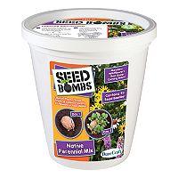 Dunecraft Native Perennial Mix Seed Bomb Bucket