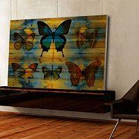 Parvez Taj Lepidoptera Butterfly Wall Art