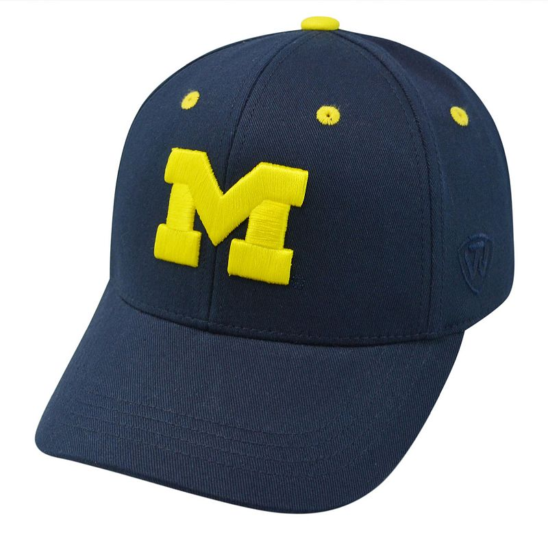 Youth Top of the World Michigan Wolverines Rookie Cap