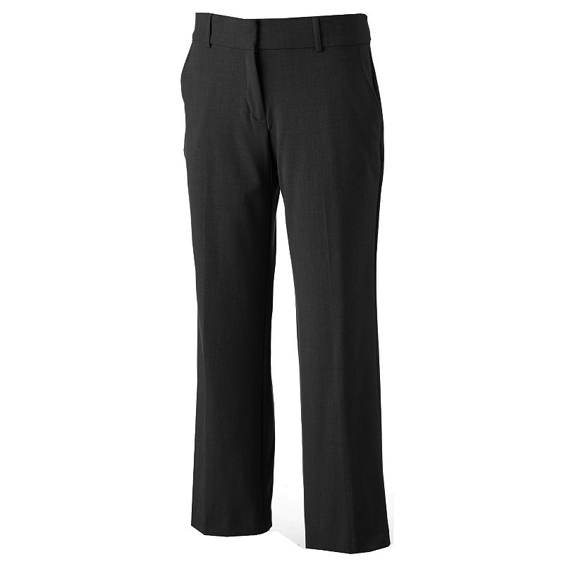 Petite Briggs Perfect Fit Dress Pants