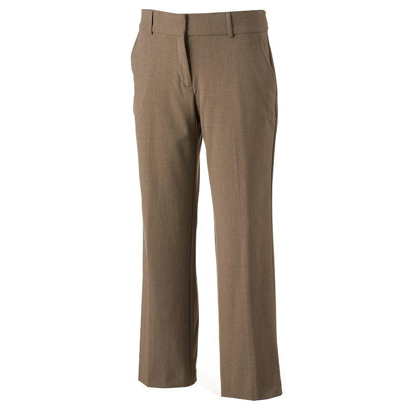 Petite Briggs Perfect Fit Dress Pants