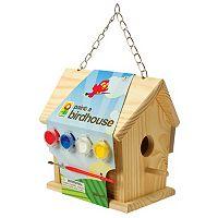 Toysmith Paint A Birdhouse Kit