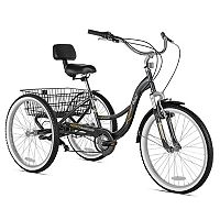 Adult Northwoods 24-in. RockPoint Trike