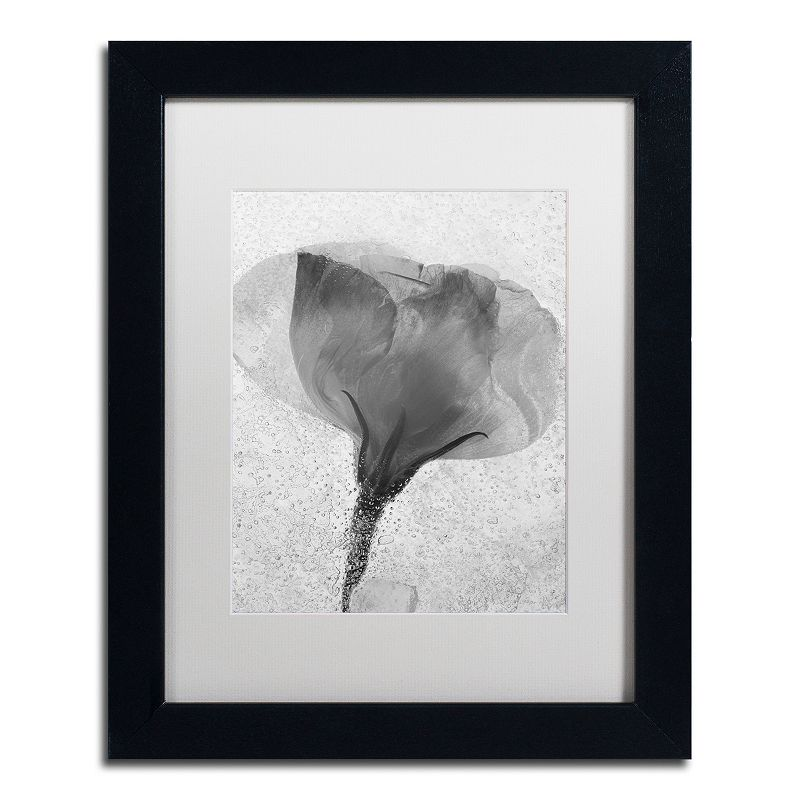 Trademark Fine Art Flowers on Ice Framed Wall Art