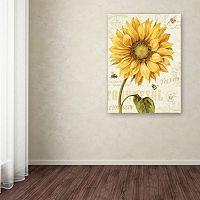 Trademark Fine Art Under the Sun I Canvas Wall Art