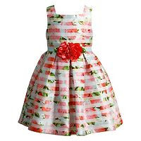 Girls 4-6x Youngland Pink Floral Burnout Stripe Dress
