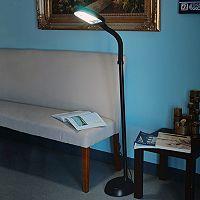 Portsmouth Home Sunlight Black Floor Lamp