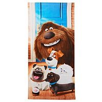 The Secret Life of Pets House of Fun Beach Towel