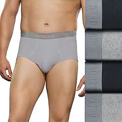 Big & Tall Fruit of the Loom Signature 4-pack Briefs