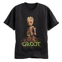 Boys 8-20 Guardians Of the Galaxy Groot Tee