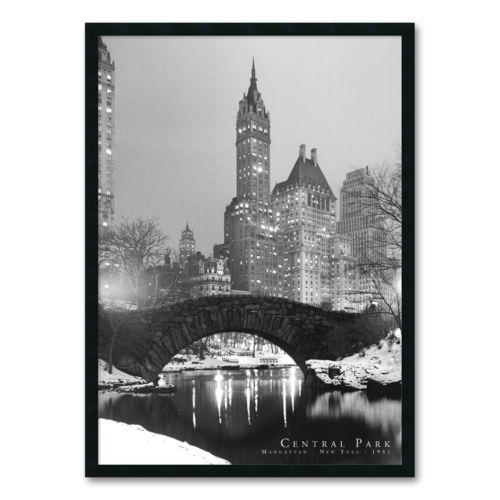 Central Park Framed Wall Art