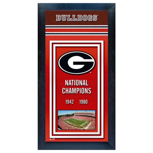 Georgia Bulldogs National Champions Framed Wall Art