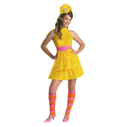 Sesame Street Big Bird Costume - Kids