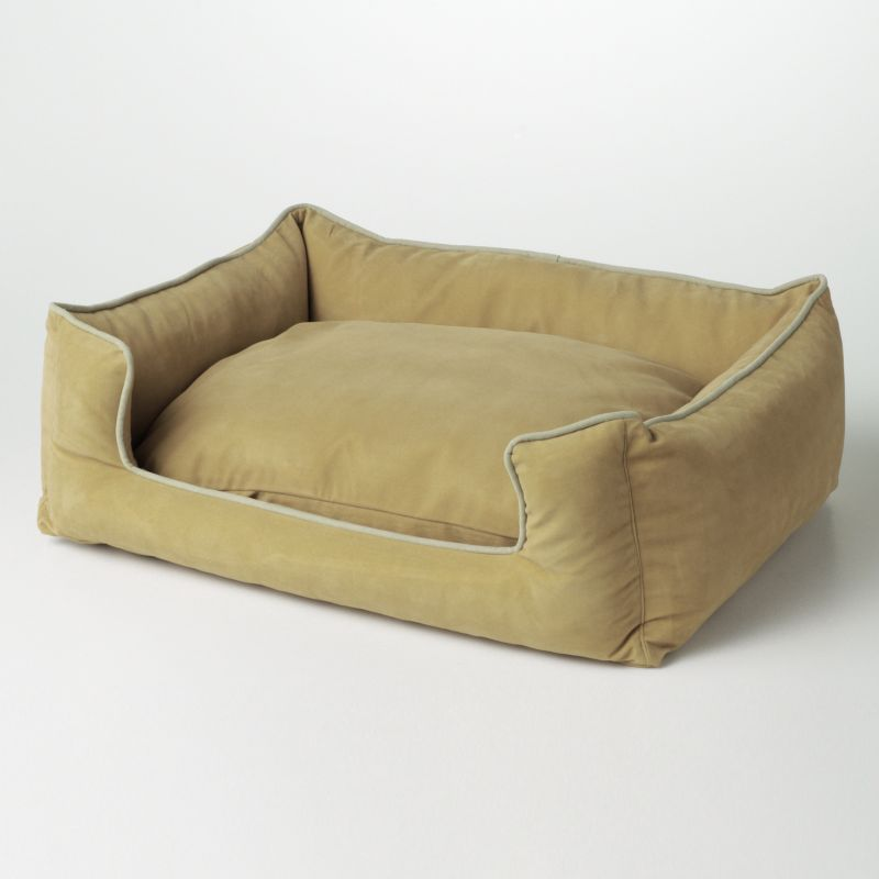 Cat Lounge Furniture