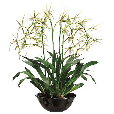 Allstate Floral 32-in. Artificial Orchid Floral Arrangement