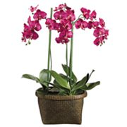 Allstate Floral 36-in. Artificial Orchid Floral Arrangement